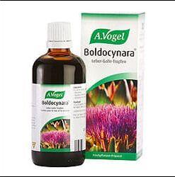boldocy1
