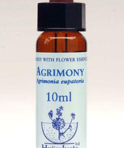Agrimony Flor de Bach Healing Herbs