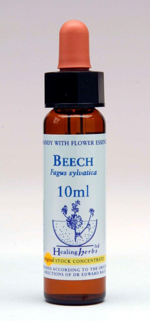 Beech Flor de Bach Healing Herbs