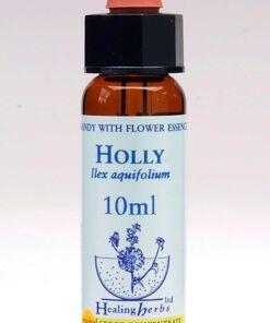 Holly Flor de Bach Healing Herbs
