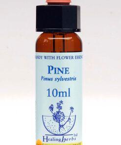 Pine Flor de Bach Healing Herbs