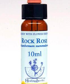 Rock Rose Flor de Bach Healing Herbs