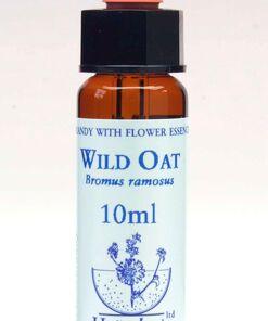 Wild Oat Flor de Bach Healing Herbs