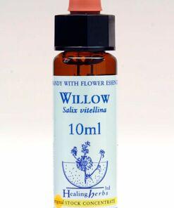 Willow Flor de Bach Healing Herbs
