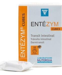 Entezym Masticables 12 Cubos de Nutergia