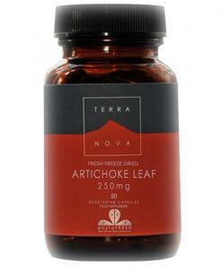 Alcachofera 250 mg (Cynara scotymus) de Terranova