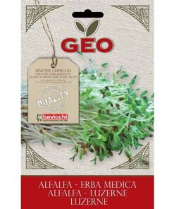semillas de alfalfa geo