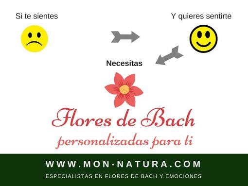 flores de bach personalizadas para ti