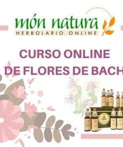 curso online de flores de Bach
